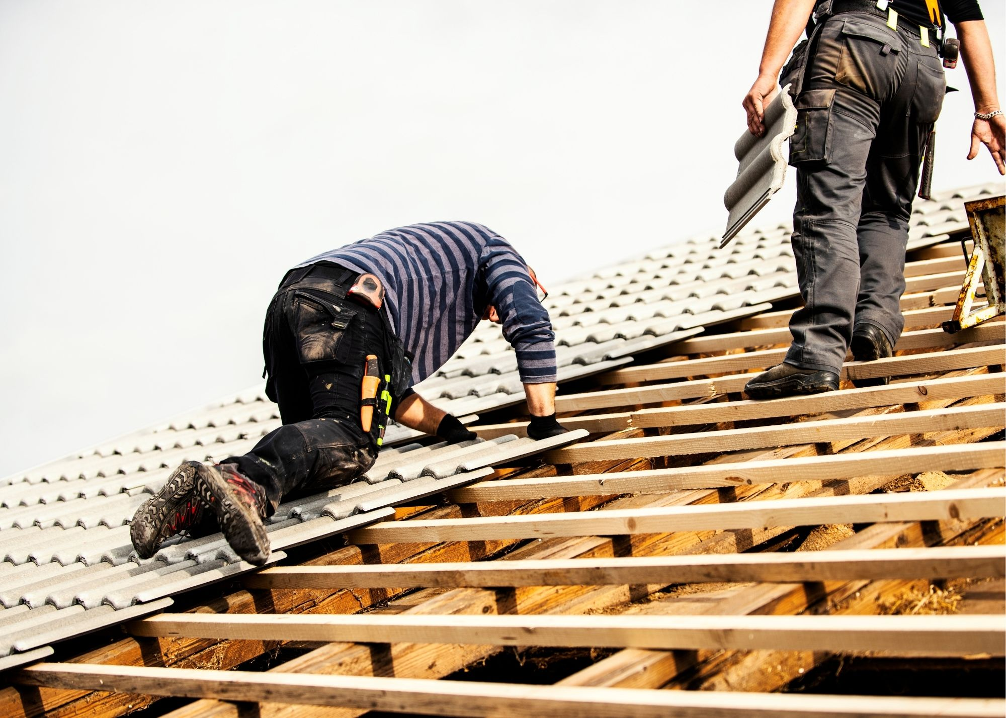 roofers-6
